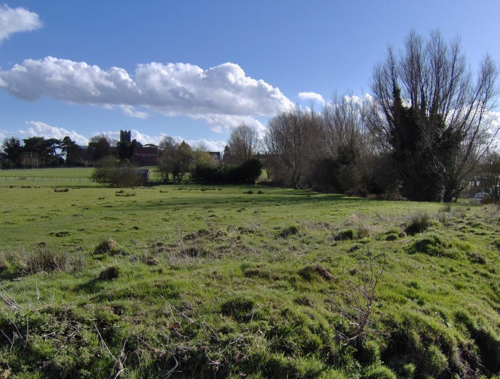 Chedgrave Common