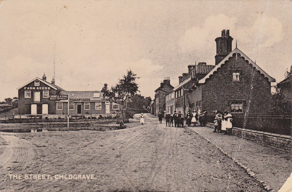 Chedgrave Village Green and Jubilee Oak Tree circa 1905